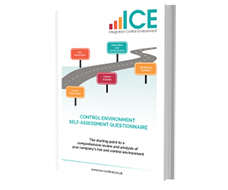 Control Environment self-assessment book cover